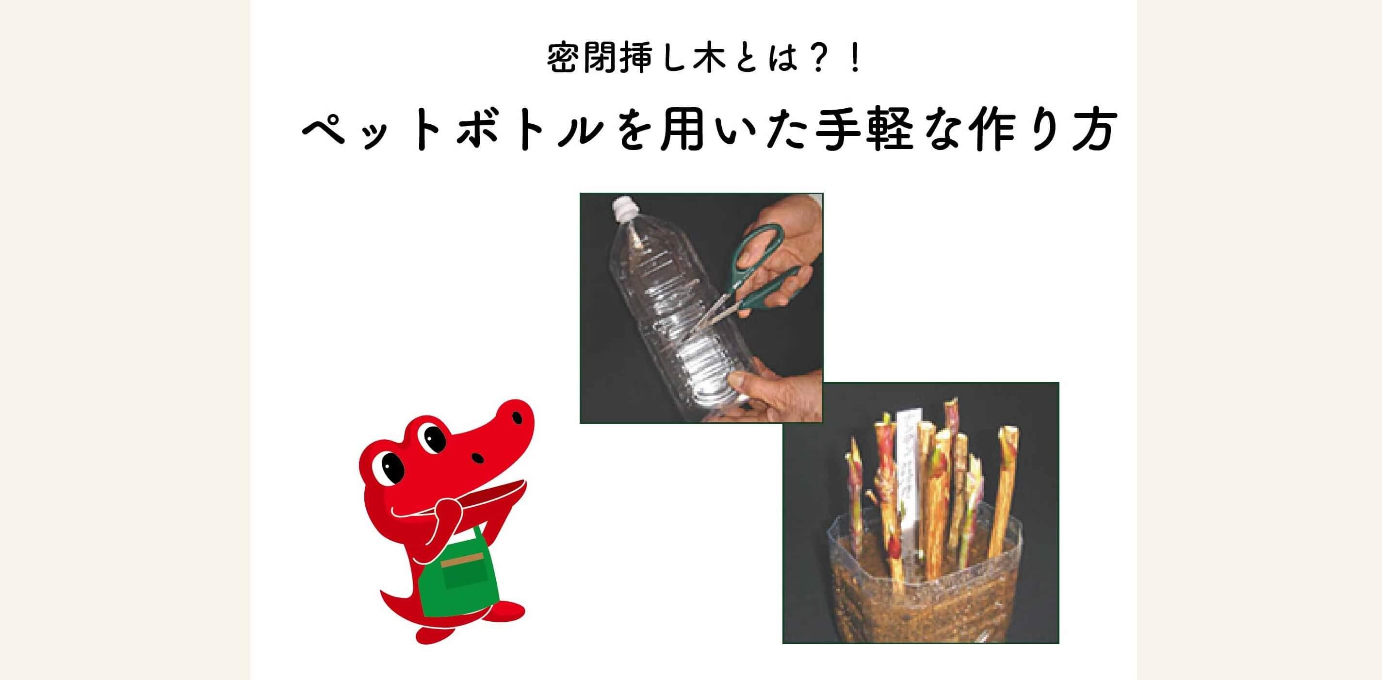 【春の園芸作業】密閉挿し木とは?ペットボトルを用いた手軽な作り方