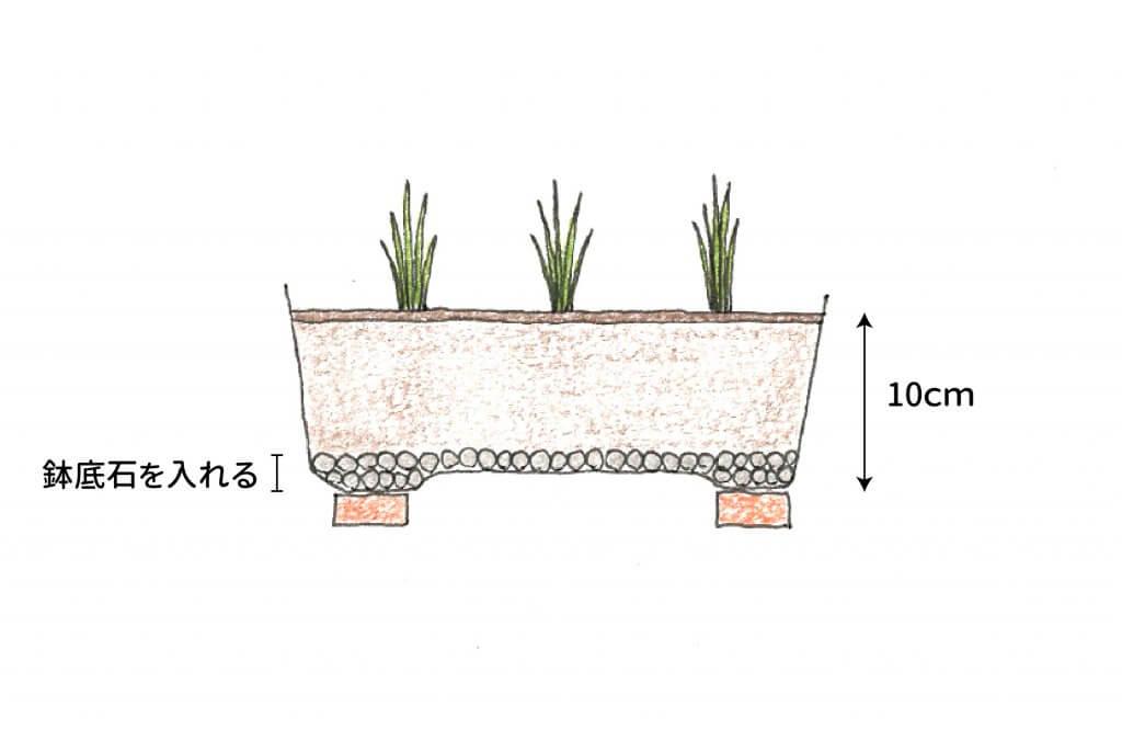 チャイブを植えたプランターのイラスト