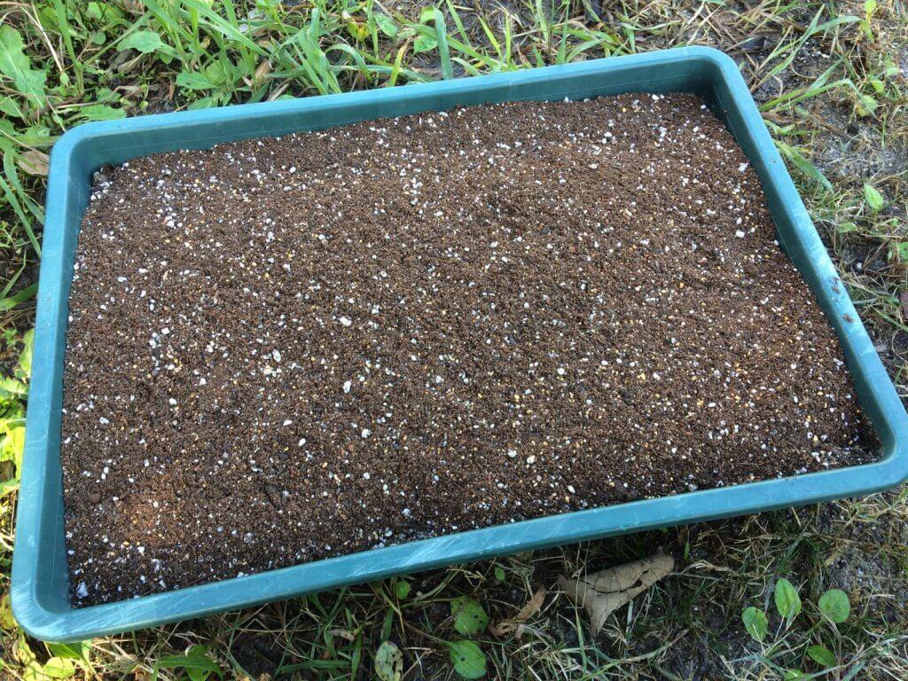 土の再生方法~バーク堆肥を混ぜた土