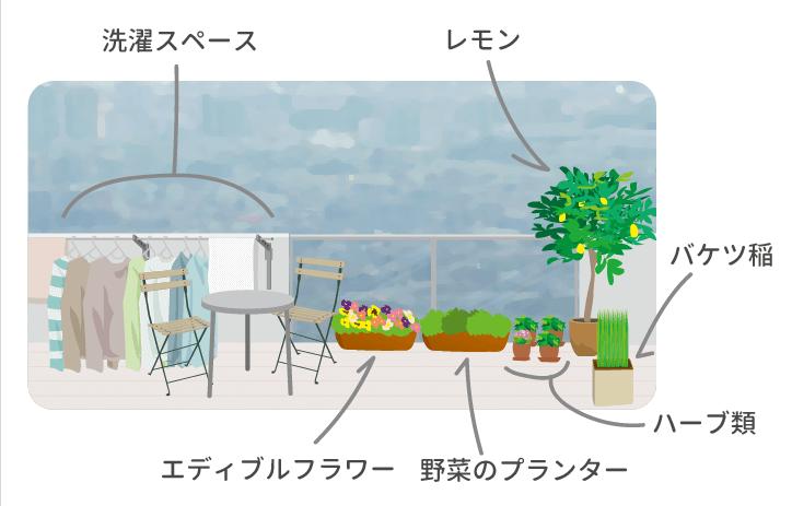 ベランダガーデニングの植物配置アイディアのイラスト