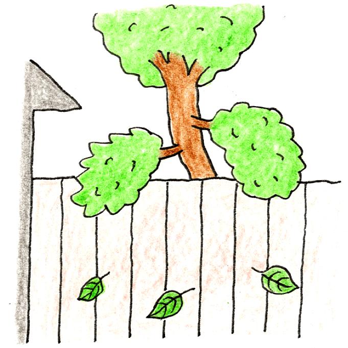 庭木のお手入れ(剪定)方法_剪定しないとどうなるの?_隣家に庭木の葉が落ちるイラスト