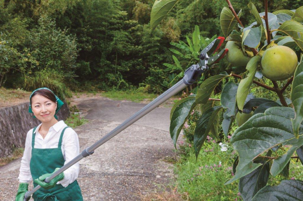 軽量伸縮式高枝鋏ズームチョキエコノ使用写真