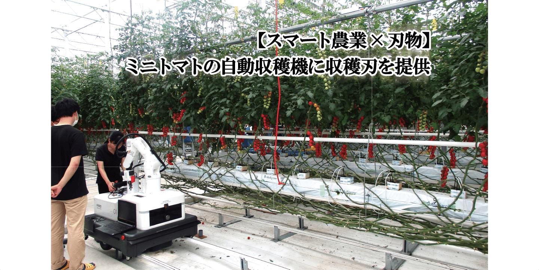 【スマート農業×刃物】ミニトマトの自動収穫機に専用刃を提供