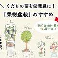 くだもの苗を盆栽風に!「果樹盆栽」のすすめ