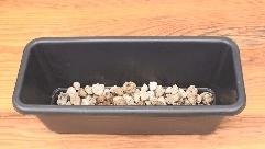 プランターに土を入れる手順説明-鉢底石を入れた写真