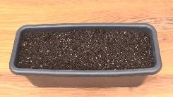 プランターに土を入れる手順説明-9分目まで園芸用土を入れた写真